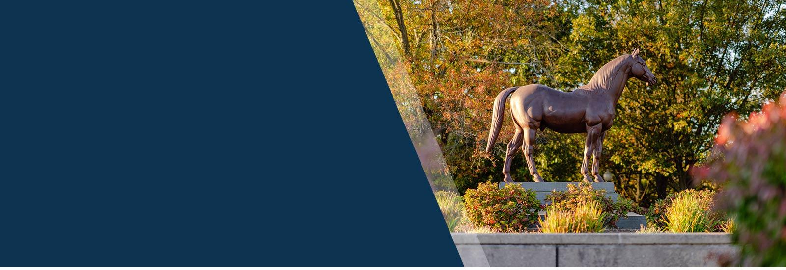 Fall at the Kentucky Horse Park